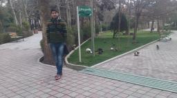 ehsann